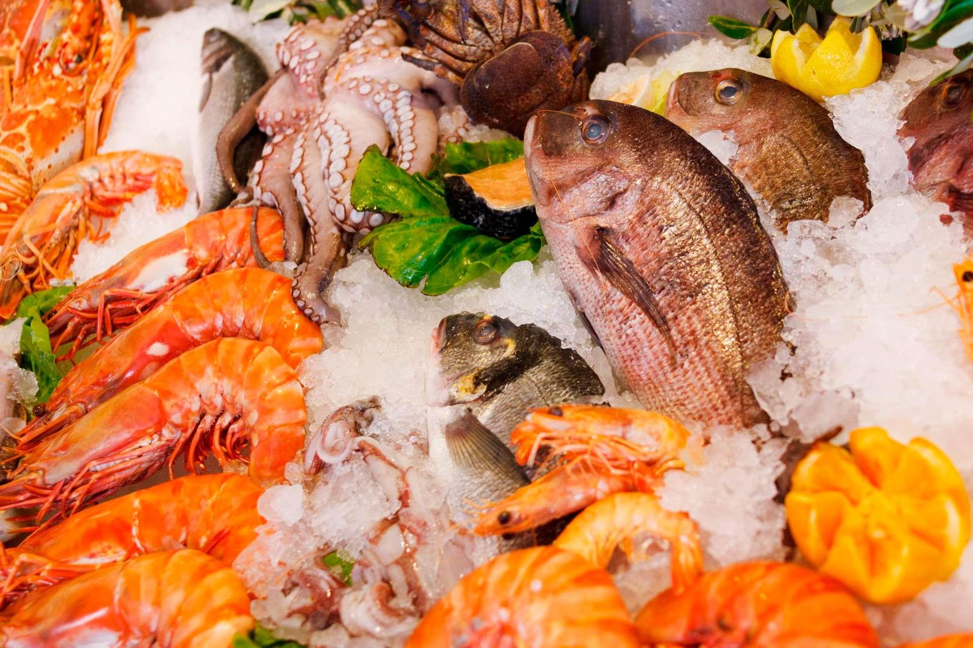 La Cucina Ischitana Il Pesce